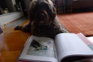 Julie Mys lesende hund